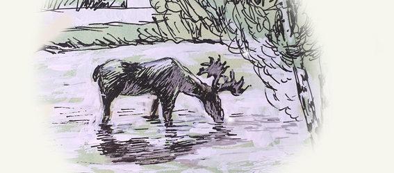 Легенда о Шайтанском лосе: Шайтанский лось - рисунок