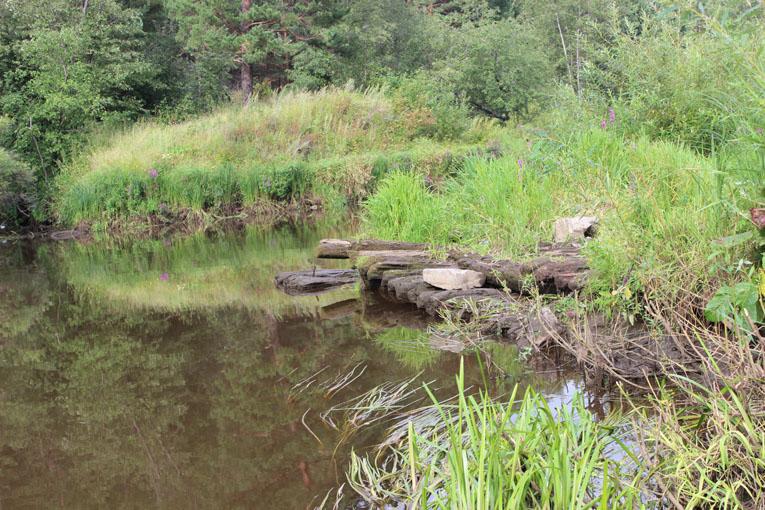 Остатки мельничной плотины у Голендухинского камня на реке Реж