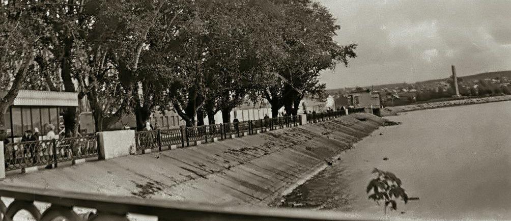 Новая Режевская плотина в 1980-х годах с памятными тополями