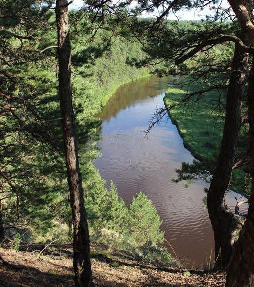 Вид со скалы Смерти на реке Реж