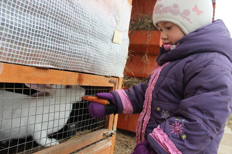 В контактном зоопарке «Русской деревни»